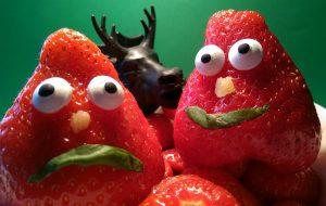 Erdbert